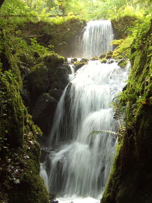 Where to Visit In Devon - Canonteign Falls