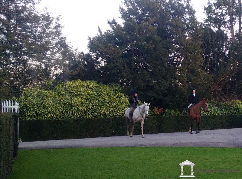 Susan Li riding her horse