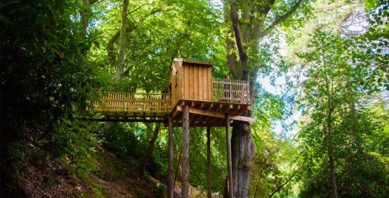 Aldourie Castle tree house