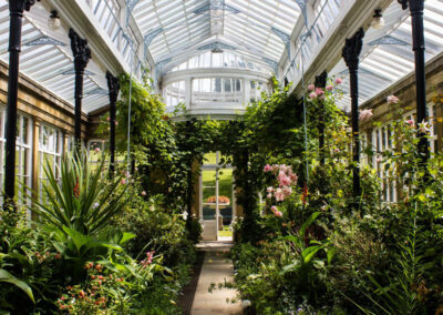 Photo of the conservatory at Broughton Hall