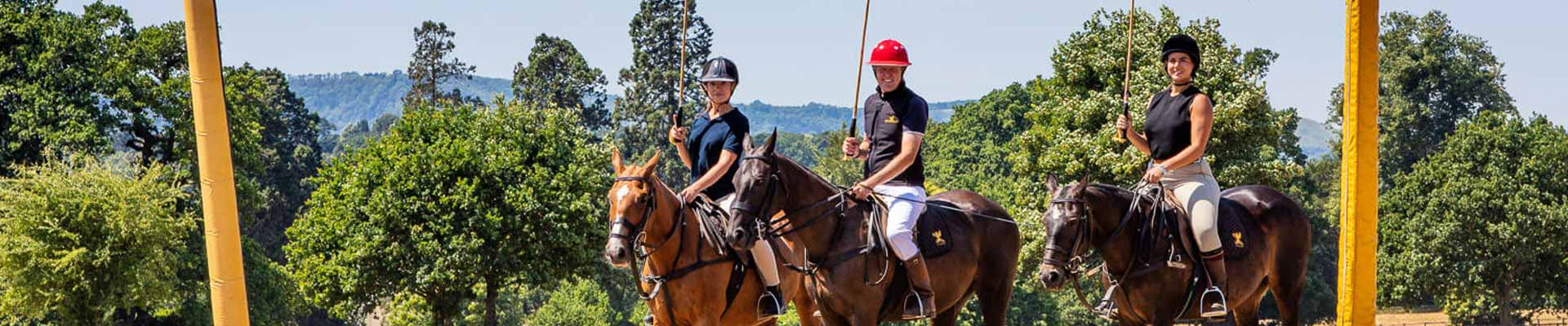 Image of guests playing Polo