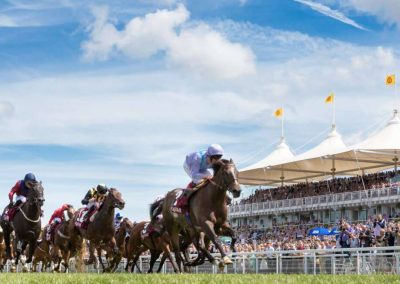 Photo of Goodwood horse racing
