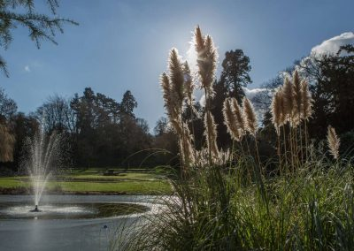 Photo of the grounds and lake at Hawkstone Hall