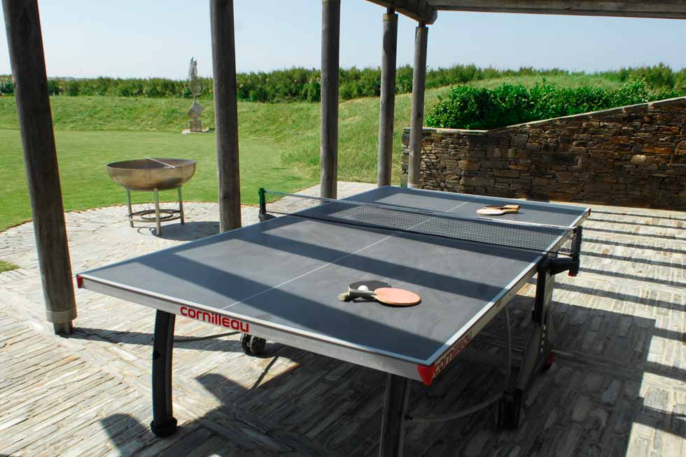 A picture of Genepis table tennis table