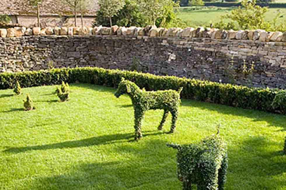 The Cow Byre gardens