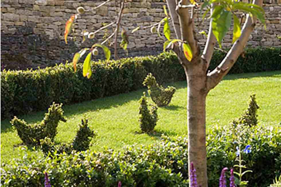 Beautiful gardens of The Cow Byre