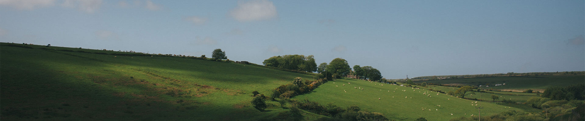 Photo of the countryside around Tregulland